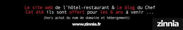 site_web_zinnia